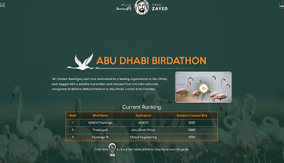 Live Birds Tracking Application